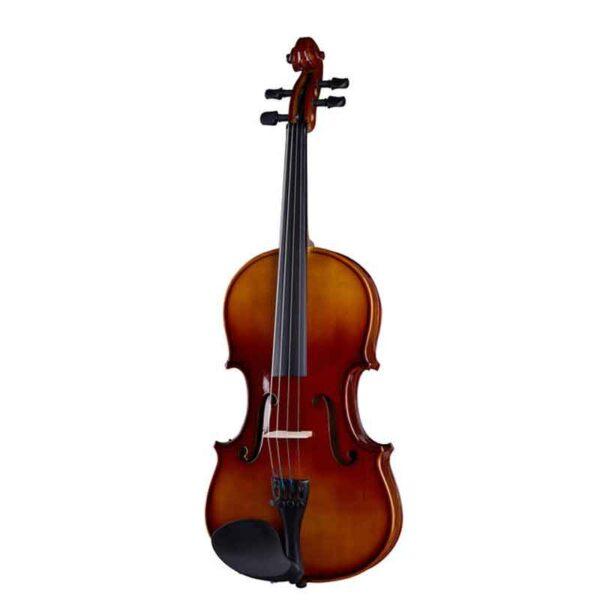 Violina-Stagg_1