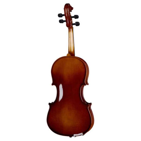 Violina-Stagg_2